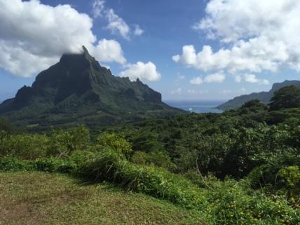 Island Landscape.l