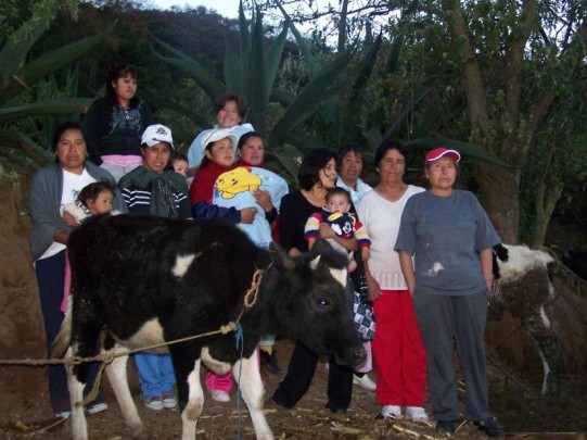 SanFelipe'sEffort.Mexico (2)